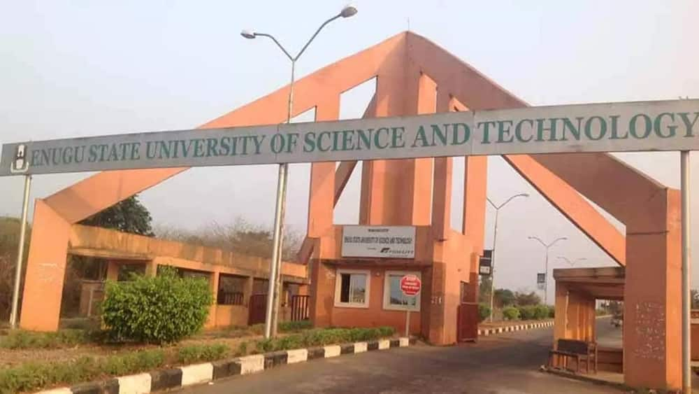 Image result for Enugu State University of Science and Technology