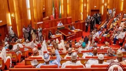 Senate makes resolution, reportedly lifts embargo on Buhari's appointments