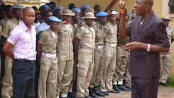 Please direct IGP to order his men to vacate our office - Peace Corps boss begs Buhari