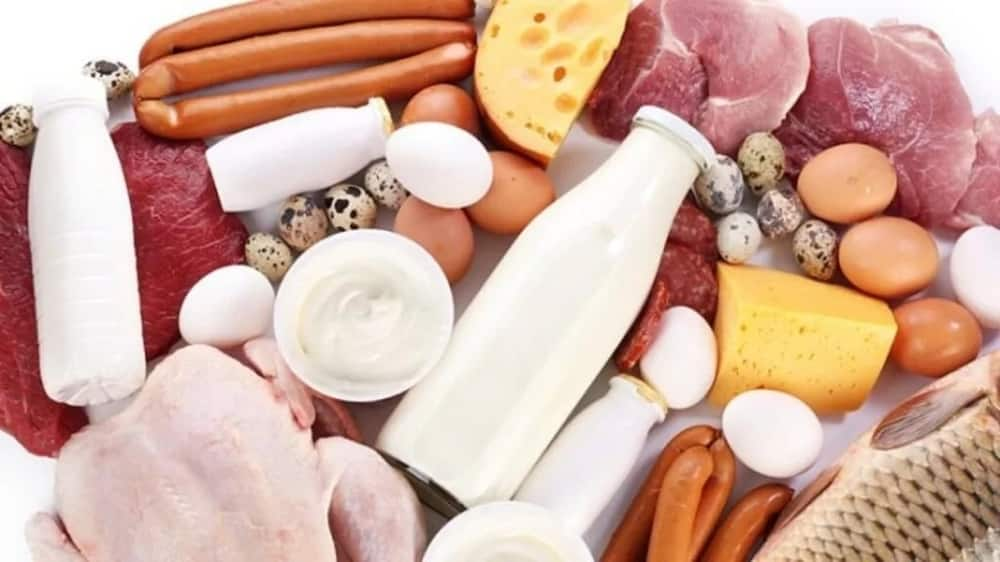 Fish, meat, dairy products
