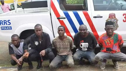 Lagos police nab 5 robbers after operation; recover weapons, assorted charms, other items (photos)