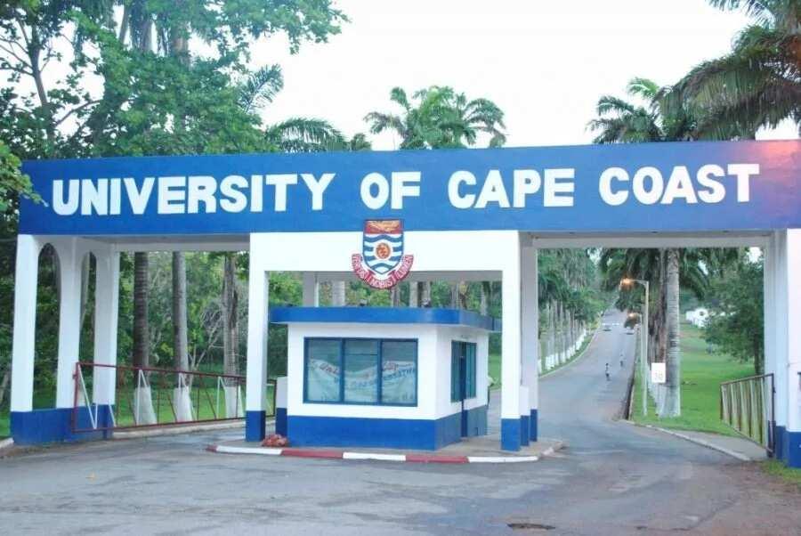 Top private universities