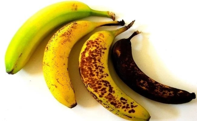 Unripe plantain for ulcer treatment ▷ Legit ng