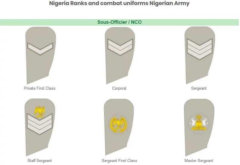 nco ranks