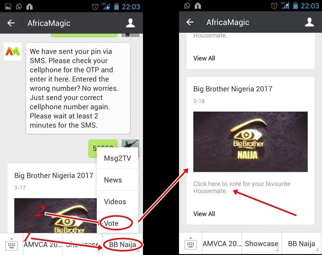 How to vote on Big Brother Naija on wechat