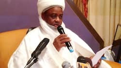 Sultan in danger over recovered loot remark? Shehu Sani expresses fears