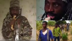 All Nigerians should work for Islam and 8 other things Shekau said in new Boko Haram video