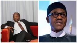 What I told Buhari over the phone - Osinbajo