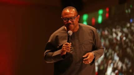 Building strong institutions will end corruption - Peter Obi