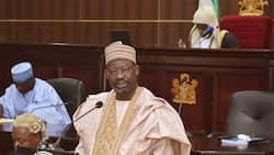 Election 2019: Many party chieftains betrayed PDP in Gombe - Gov Dankwambo