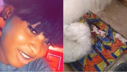 Nigerian lady calls herself a grandmother after her dog gave birth to 5 puppies