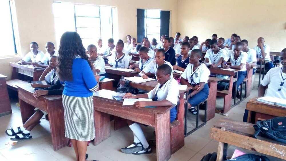 Image result for Nigerian schools
