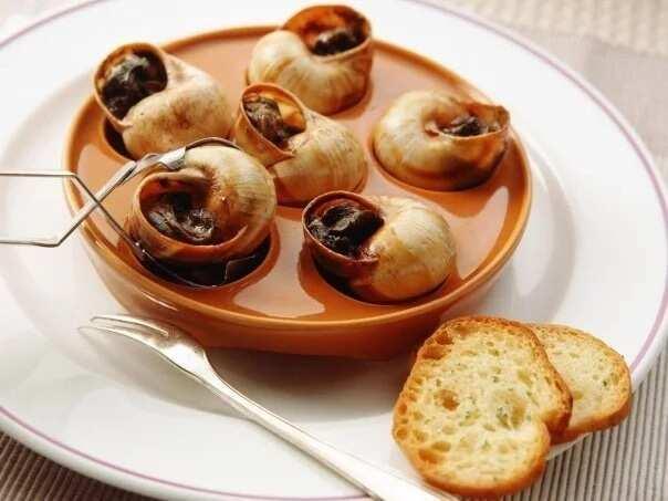 Snail meat