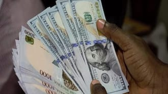 Opinion: CBN and AbokiFX's black market rates: How transparent is AbokiFX by Odewale Abayomi