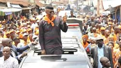 Mimiko's return to Labour Party rekindles our hope and confidence - Party chairman
