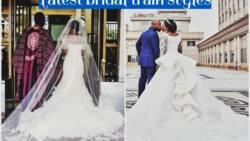 Latest Nigerian bridal train styles