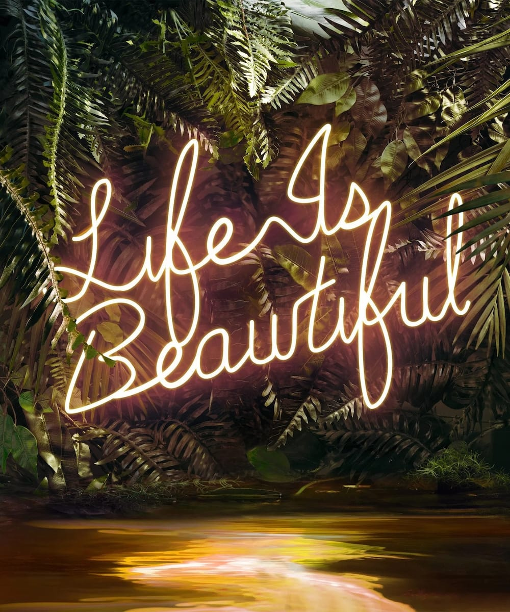 Life Is Beautiful Quotes For Your Inspiration Legit Ng
