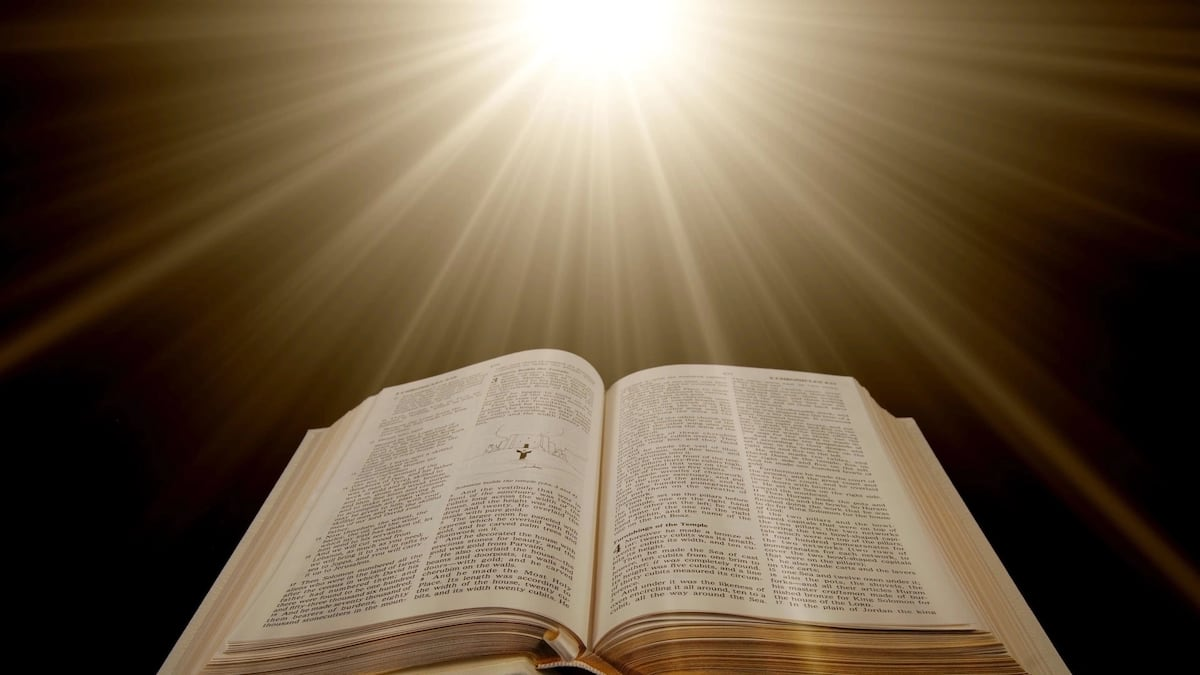Bible verses on protection from enemies and harms ▷ Legit ng