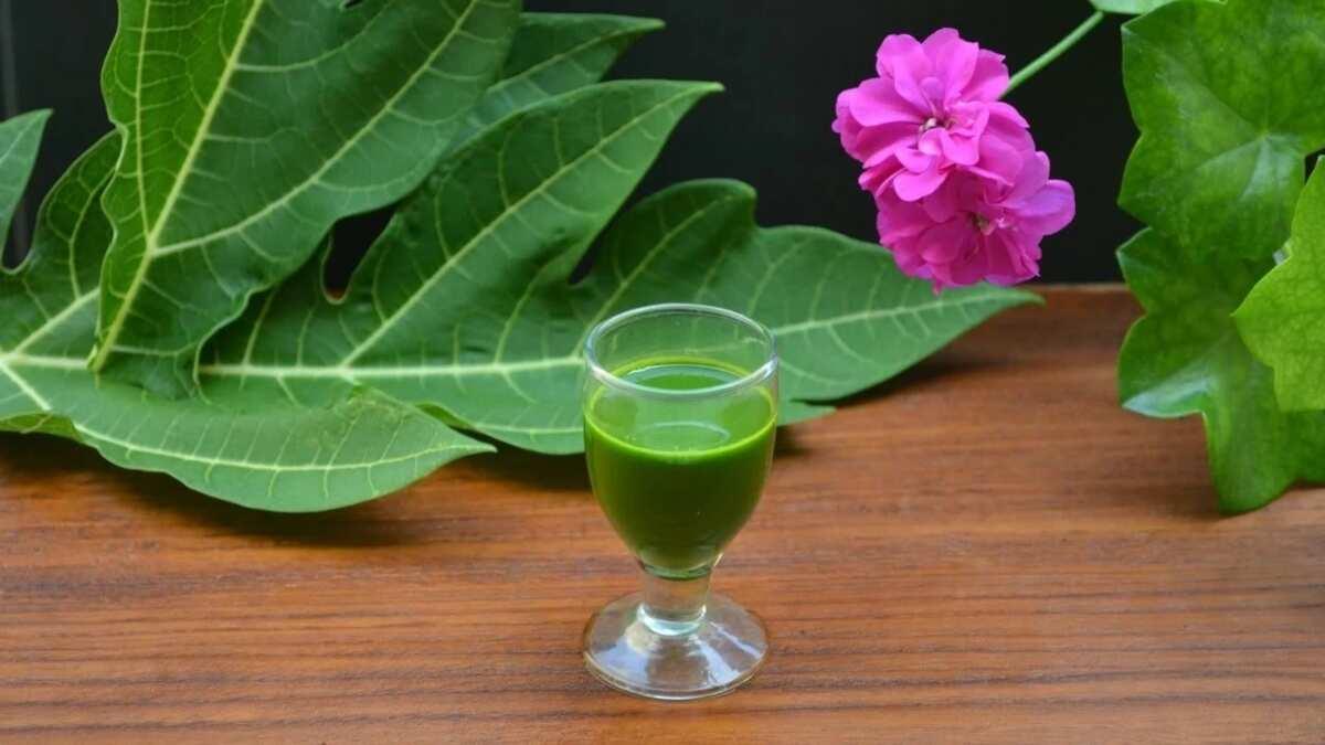 Pawpaw leaves juice