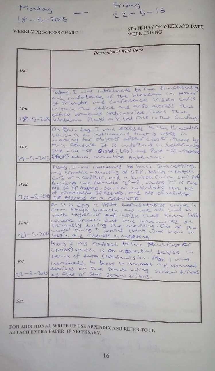 training diary format