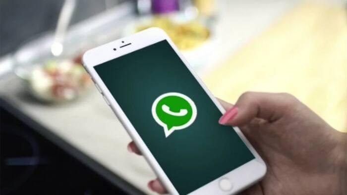 Jerin wayoyi 20 da ke bukatar inganta zubin kwakwalwa saboda matsala da WhatsApp