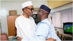 Glorified death certificate: Pastor Bakare sends direct message to Buhari on 1999 constitution