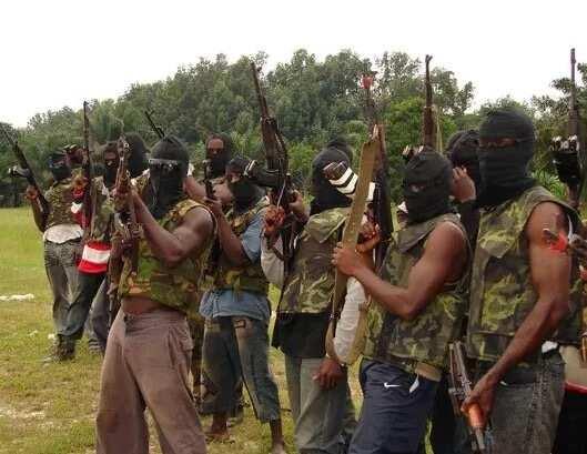 Ba zamu yarda da tsige Saraki ta karfin tuwo ba – 'Yan fafutukar Niger Delta