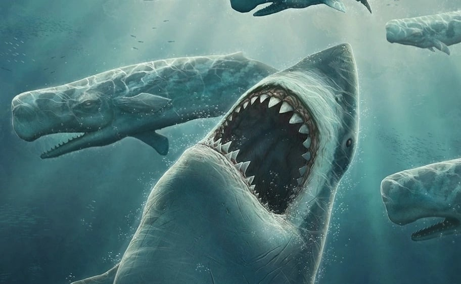 Megalodon is considered the strongest and large predator