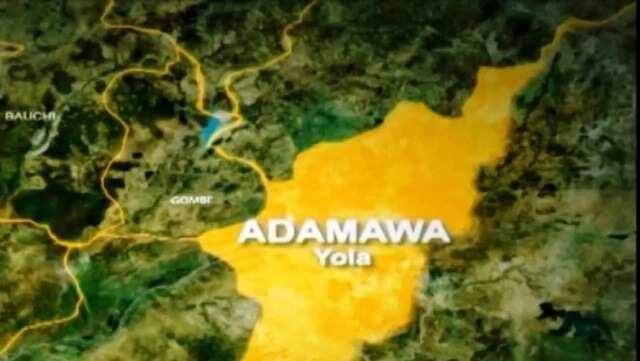 Yanzu yanzu: An yi awon gaba da mata masu yawa a sabon harin Adamawa