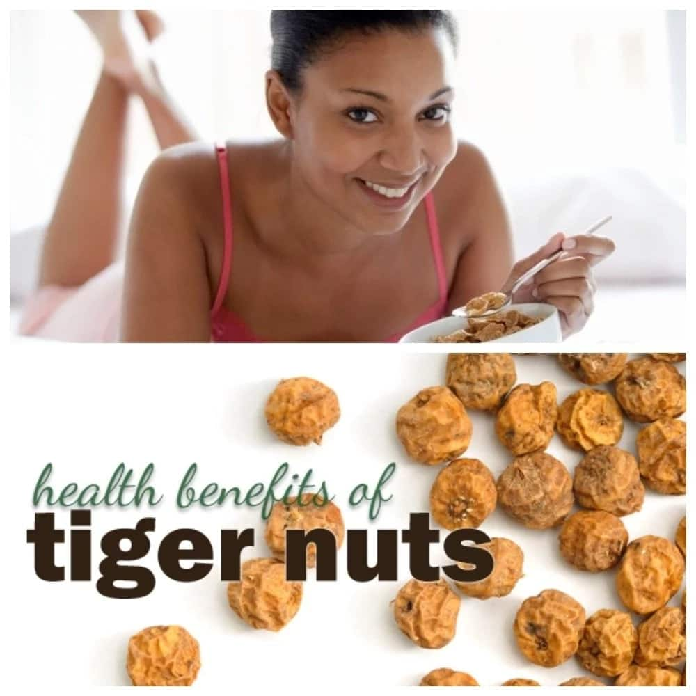 Benefits of Tiger Nuts, Dates and Coconut [Updated 2019