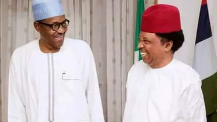Buhari should clarify his stand on El-Rufai's Muslim-Muslim ticket - Shehu Sani
