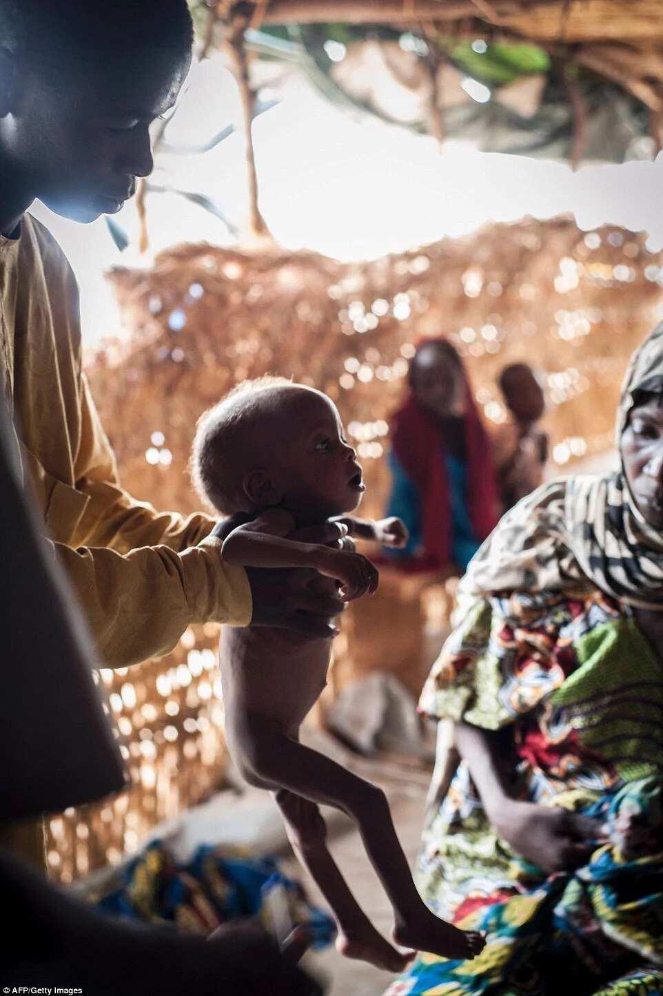 Malnutrition crisis hits IDP camps in Borno