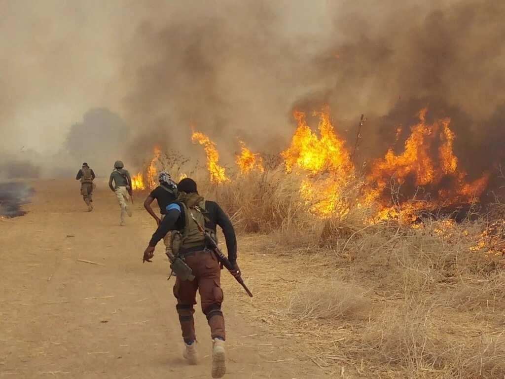 Yanzu-Yanzu: An kashe 'yan kunan bakin wake 3 a Maiduguri - NEMA
