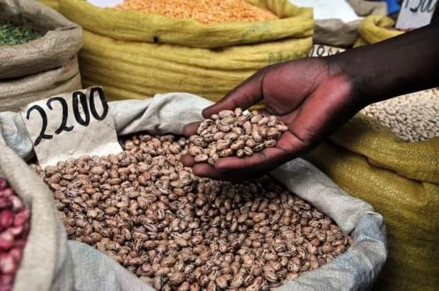 legumes in a hand