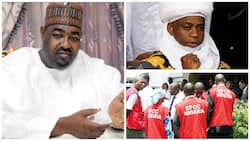 Pressure arise as EFCC goes after Alhaji Hassan Danbaba
