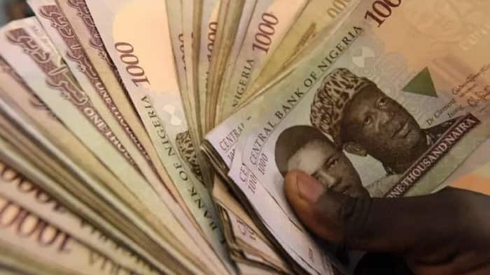 Good news as FG offers N5million loans to Nigerian graduates to fight unemployment