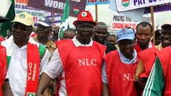 What NLC will do about governors owing salaries, pensions - Ayuba Wabba