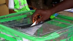 INEC: top historical facts to know