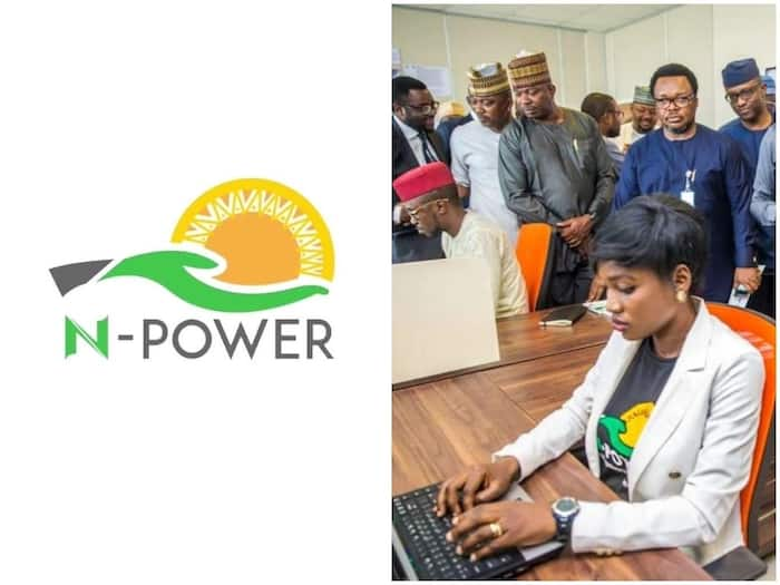N-Power latest update: FG announces date of deployment ▷ Legit ng