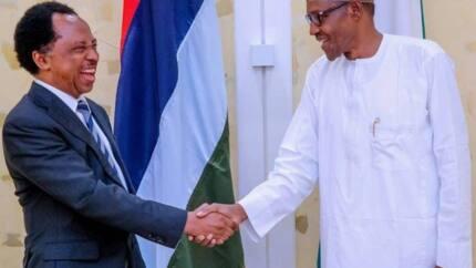 Like Jonathan, Buhari intimidating opposition ahead 2019 election - Senator alleges