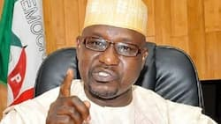 Ahmed Gulak: 4 facts about Goodluck Jonathan's ex-political adviser killed in Imo by gunmen