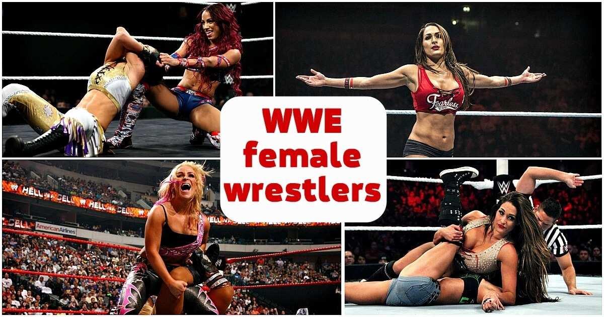 Who are WWE female wrestlers?