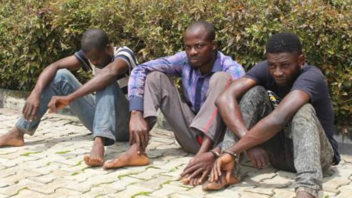 Police nab notorious ex-convict who 'stole 32 vehicles in 3 years' in Ondo