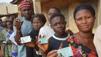 Ekiti poll: Incomplete inspection of documents by respondents stalls hearing, tribunal adjourns