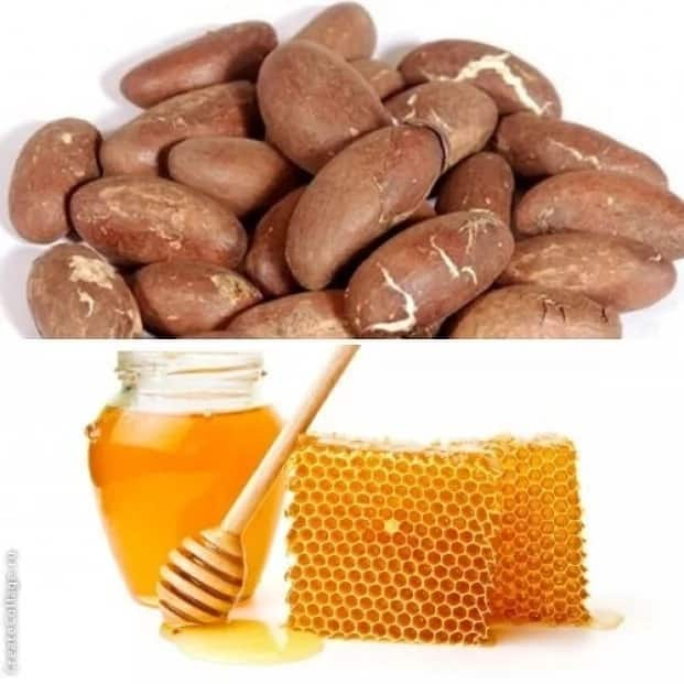Bitter kola and honey - What is the effect? ▷ Legit ng