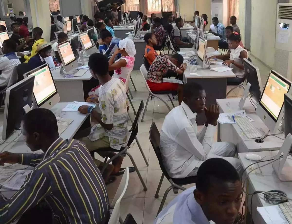 students check results online