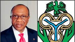 Company sues CBN for the name Enaira another wants N6.6m to sell similar domain