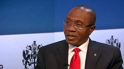 How Nigeria was able to crash food importation by 60% - CBN reveals