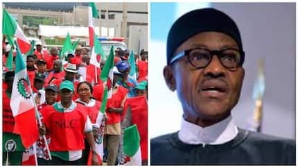 Nigerians can't afford one meal a day, NLC tells Buhari
