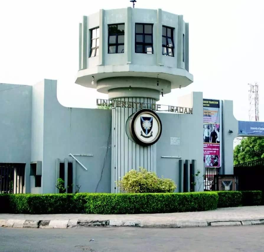 University of Ibadan direct entry admission requirements